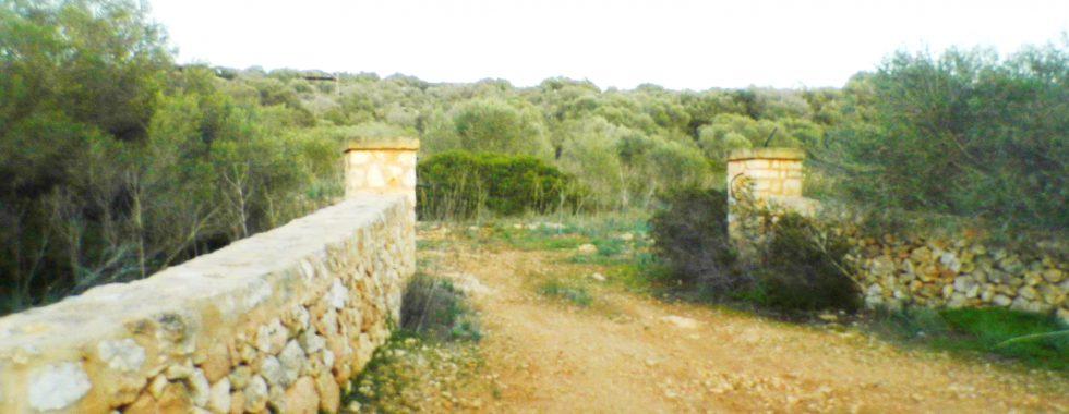 Grundstück mit Meerblick bei Ses Salines — T 18